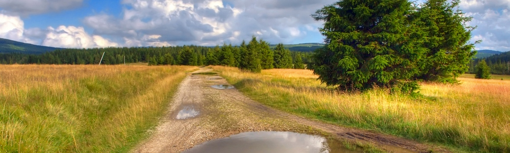 Droga przez Izerską Halę