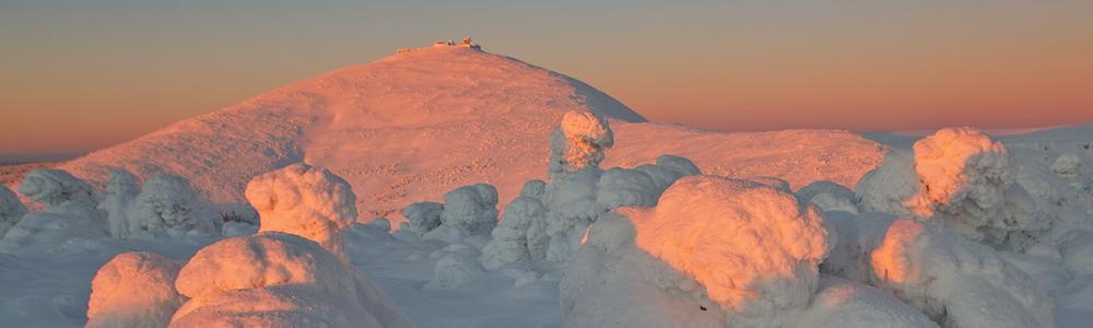 Widok w kierunku Śnieżki, Czarna Kopa