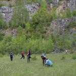 Kamieniołom na Miłku jest miejscem występowania ciekawych gatunków