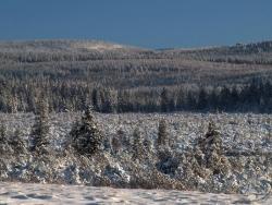 Grzbiet Wysoki_w zimowej szacie.jpg