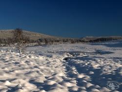 Hala Izerska zimą.jpg