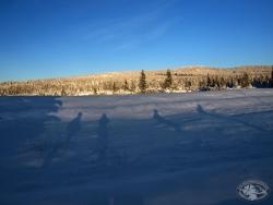 Zimowa droga przez Izerską Halę - widok na Grzbiet Wysoki.jpg